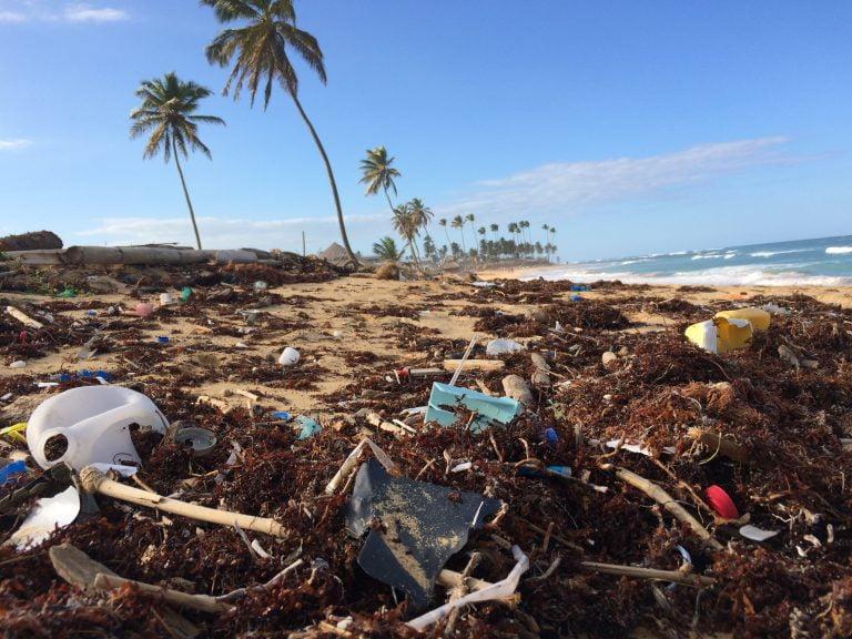 15 ideas para vivir sin plásticos